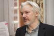 Caso Assange, le accuse smontate dagli esperti